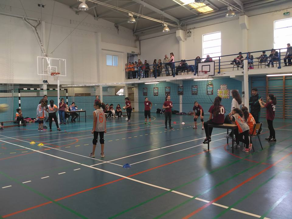 voleibol-4