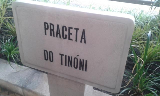 tinoni6