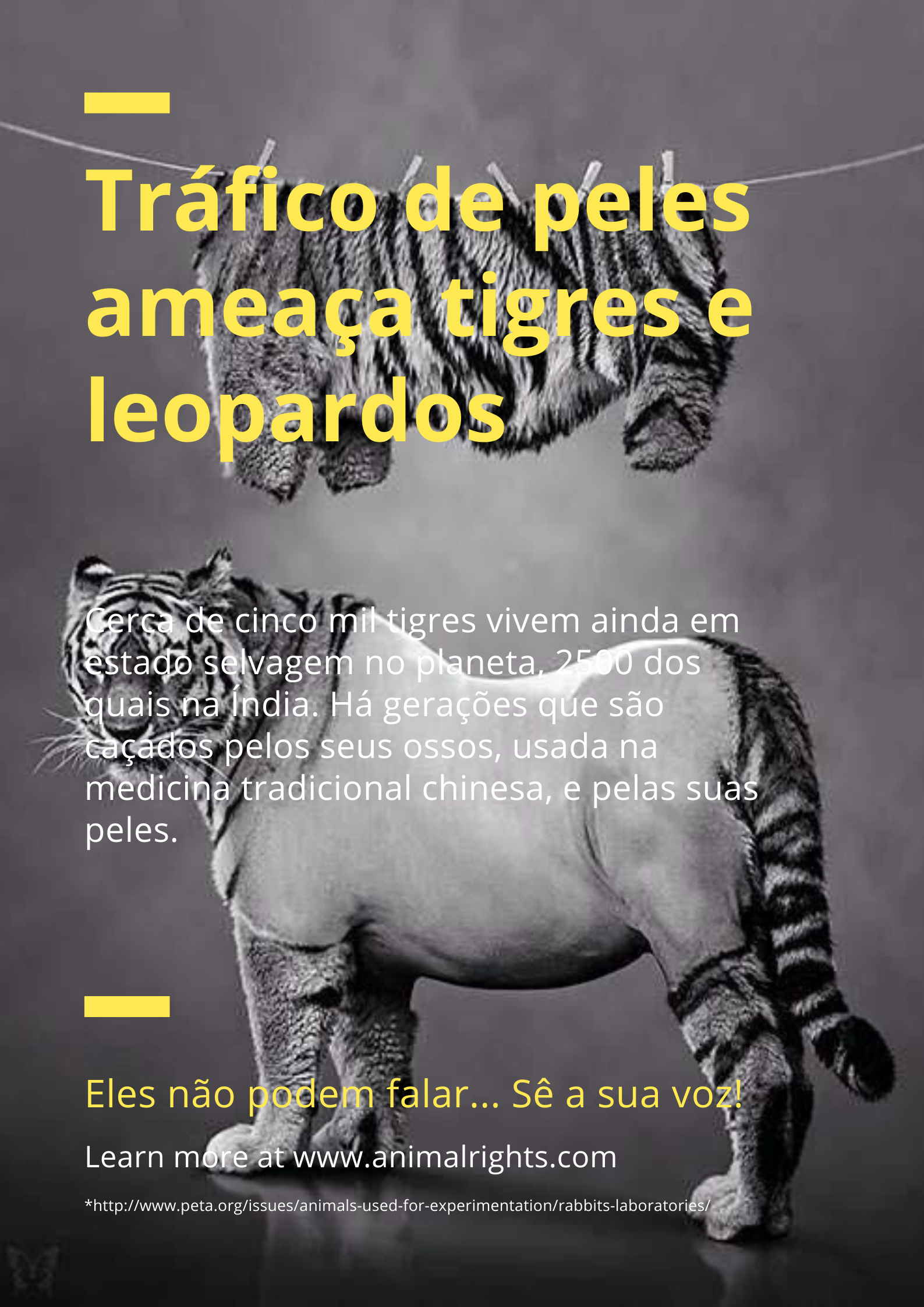 Blue & Yellow Animal Cruelty Awareness Rights Poster